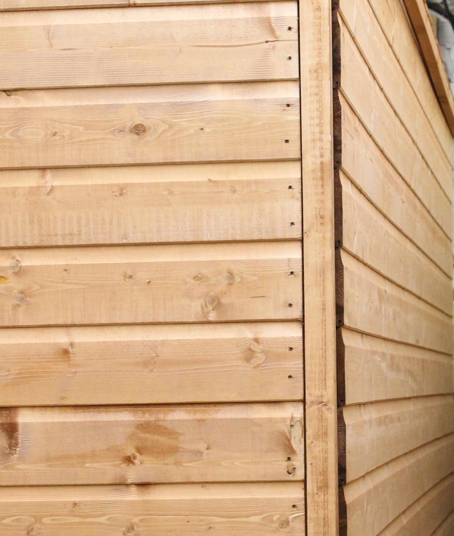 6 X 8 Tongue And Groove Reverse Apex Shed With Single Door